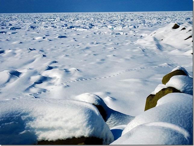 ウトロ崎 流氷 ウトロ