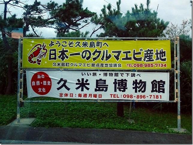 久米島 クルマエビ