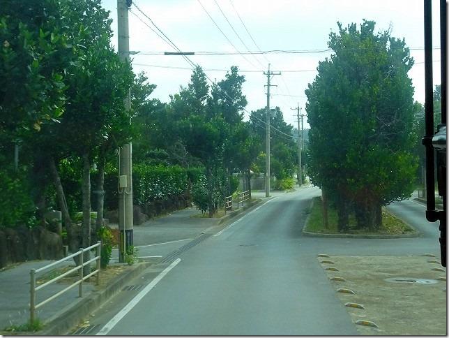 真謝(まじゃ)のチュラ福木並木 沖縄県 久米島