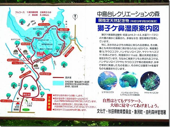 中島台レクリエーションの森