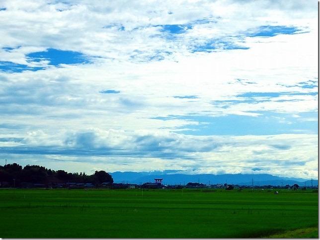 弥彦神社(新潟県 弥彦村) 鳥居