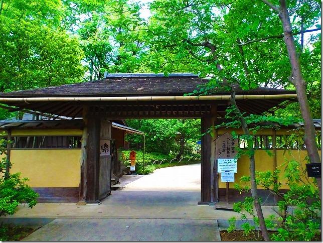 国営 昭和記念公園