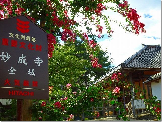 妙成寺(石川県 羽咋市)