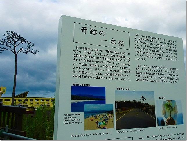 奇跡の一本松(岩手県 陸前高田市)