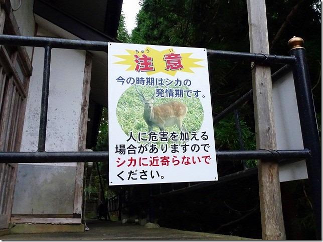 金華山 黄金山神社(宮城県 石巻市)
